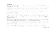 Microsoft Word - INTRO-BPfinal.docx